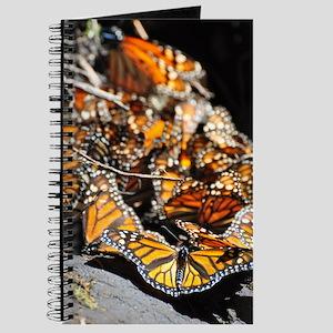 Monarch Butterflies 2 Journal