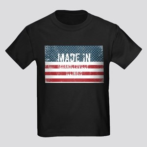 Made in Chandlerville, Illinois T-Shirt