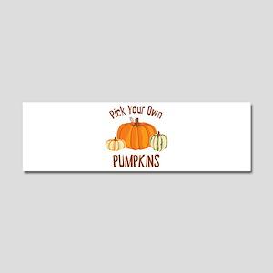 Pick Your Own Pumpkins Car Magnet 10 x 3