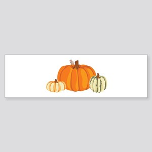 Pumpkins Bumper Sticker
