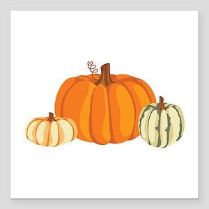 """Pumpkins Square Car Magnet 3"""" x 3"""""""