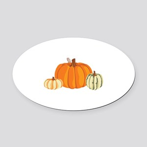 Pumpkins Oval Car Magnet