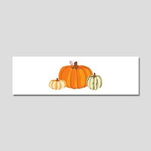 Pumpkins Car Magnet 10 x 3