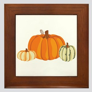 Pumpkins Framed Tile