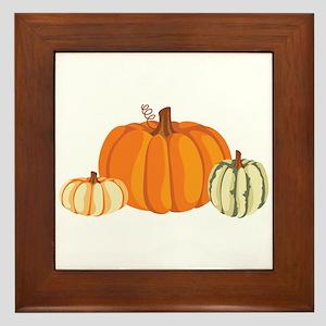 Pumpkins Framed Tile