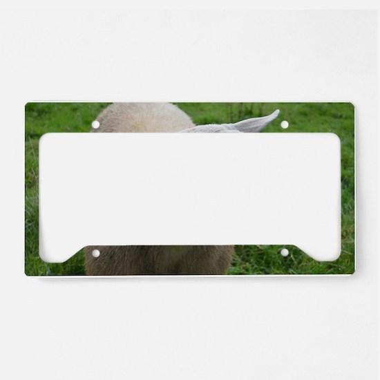 Cuddly Lamb License Plate Holder