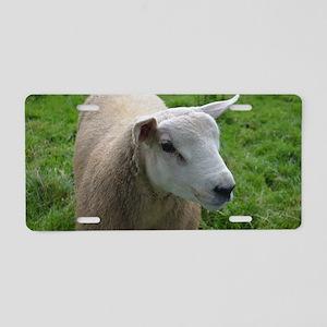 Cuddly Lamb Aluminum License Plate