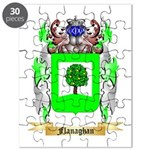 Flanaghan Puzzle