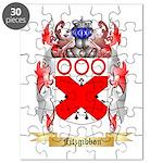 Fitzgibbon Puzzle