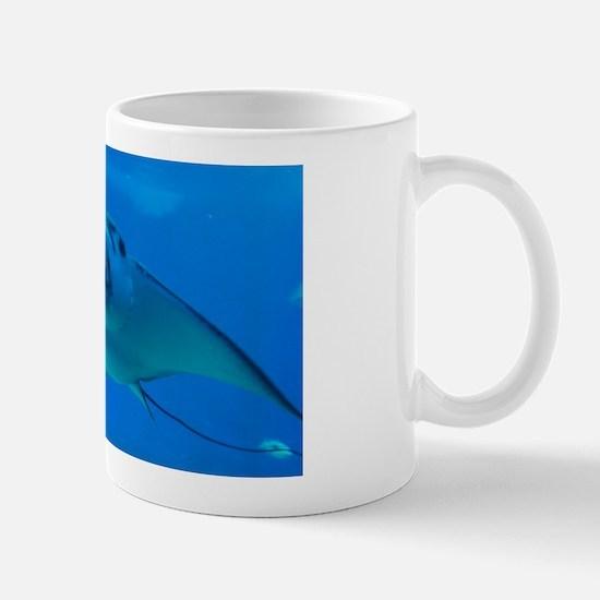 Stingray Underwater Mug