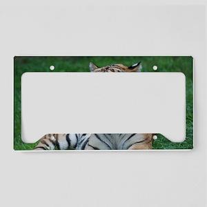 Gorgeous Tiger License Plate Holder