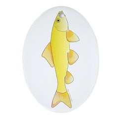 Golden Redhorse 3 Ornament (Oval)