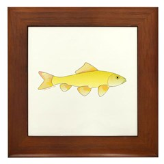 Golden Redhorse 3 Framed Tile
