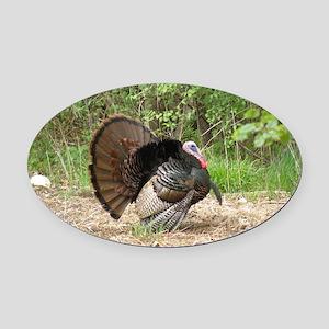 Wild Turkey Oval Car Magnet