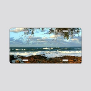 Water Style Aluminum License Plate