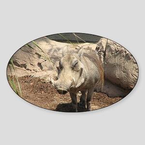 Warthog Grin Sticker (Oval)