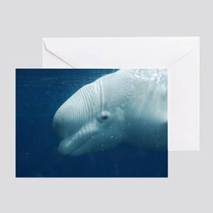 White Whale Greeting Card