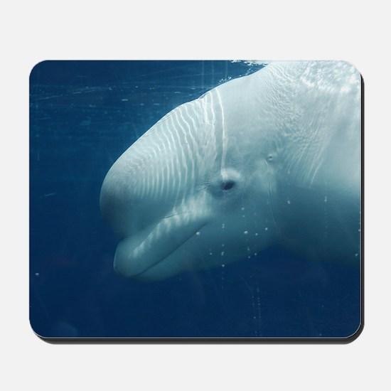 White Whale Mousepad