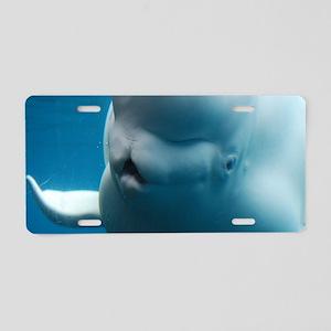White Beluga Whale Aluminum License Plate