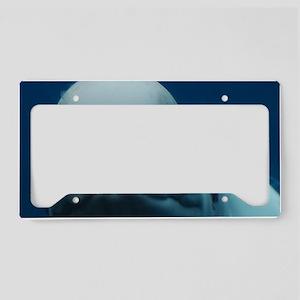 Sweet Beluga Whale License Plate Holder