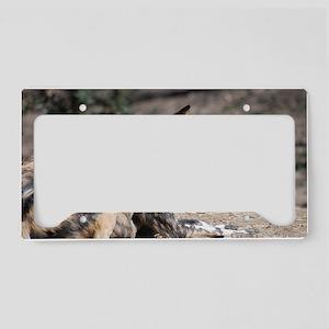 African Wild Dog License Plate Holder