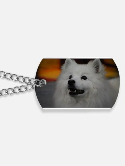 American Eskimo Dog Dog Tags