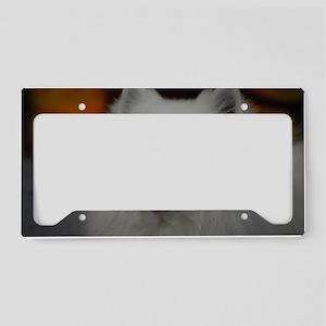 American Eskimo Dog License Plate Holder