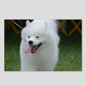 Grinning American Eskimo  Postcards (Package of 8)