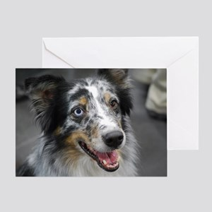 Australian Shepherd Herd Dog Greeting Card