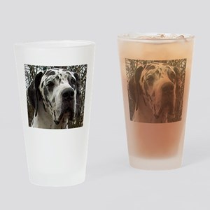 great dane harlequin Drinking Glass