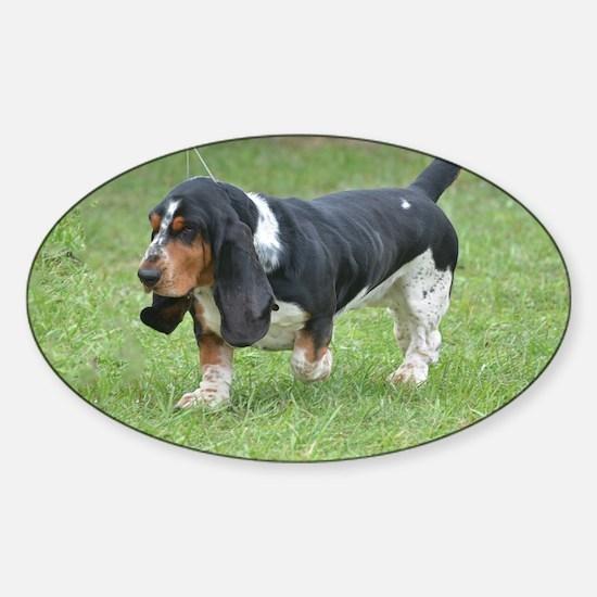 Cute Basset Hound Sticker (Oval)