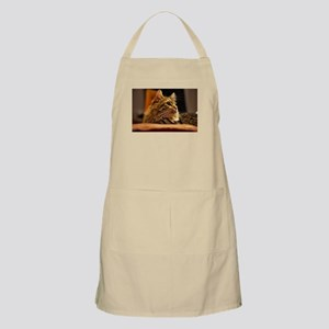 Cat ginger Apron