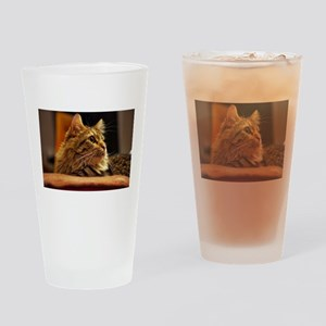 Cat ginger Drinking Glass