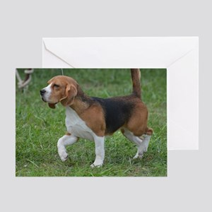 Really Cute Beagle  Greeting Card