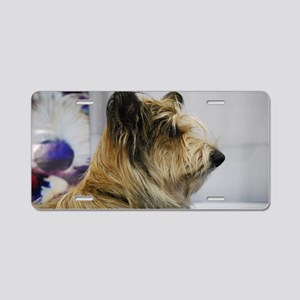 Shaggy Berger Picard Dog Aluminum License Plate