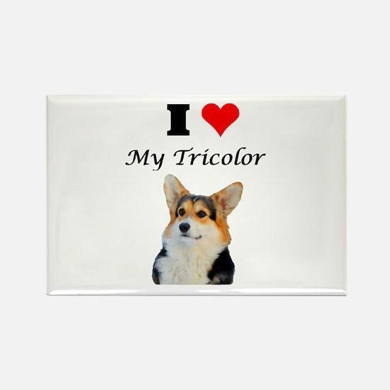 I love my Tricolor Corgi Magnets