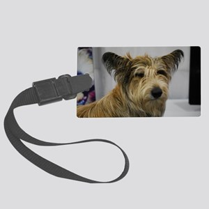Cute Berger Picard Dog Large Luggage Tag