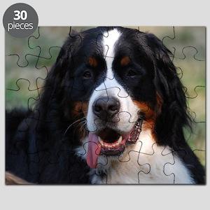Adorable Bernese Mountain Dog Puzzle