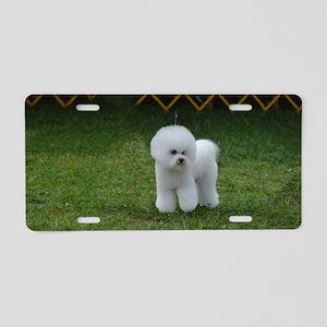 Cute White Bichon Frise Aluminum License Plate