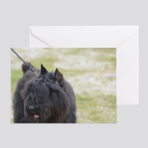 Cute Bouviers Des Flandres Greeting Card
