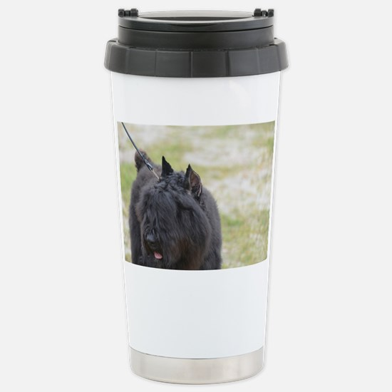 Cute Bouviers Des Fland Stainless Steel Travel Mug
