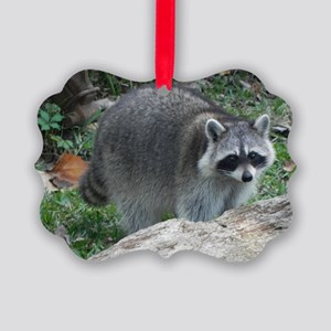 Fluffy Racoon Picture Ornament