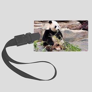 Panda bear eating bamboo Large Luggage Tag
