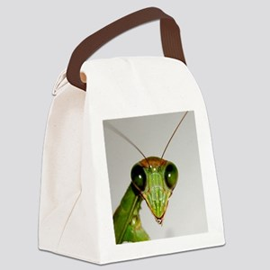 Preying Mantis Eyes Canvas Lunch Bag