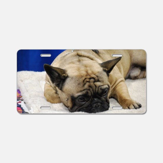 Sleeping French Bulldog Aluminum License Plate