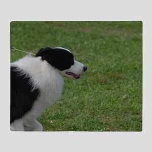 Pet Border Collie Throw Blanket