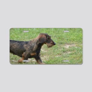 Wire Haired Dachshund Aluminum License Plate