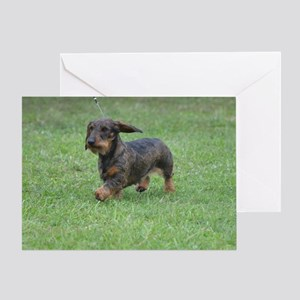 Cute Wire Haired Dachshund Greeting Card