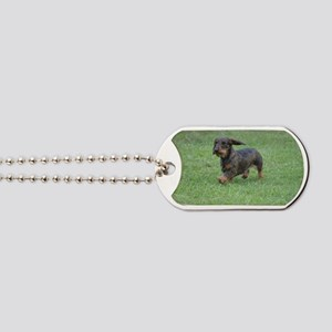 Cute Wire Haired Dachshund Dog Tags