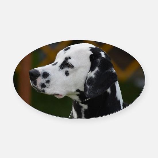 Sweet Dalmatian Oval Car Magnet
